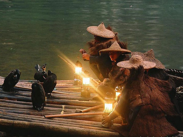 Cormorant Fishing,Guilin