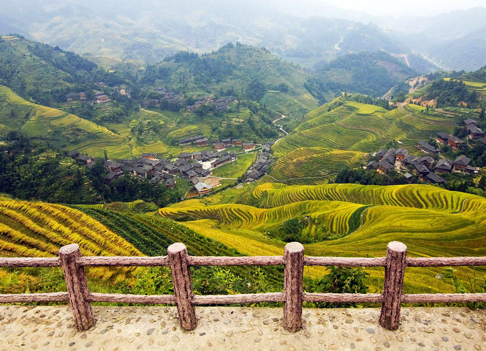 Jinkeng terraced paddy fields,Longsheng