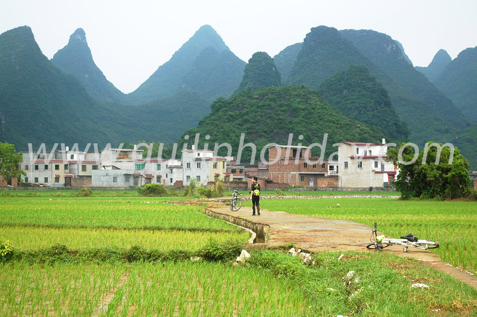 Huixian Wetland Park in Guilin