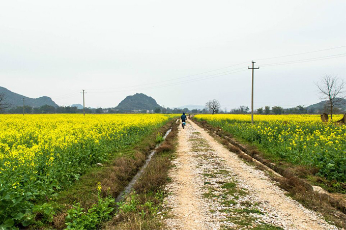 Country roads biking from Guilin to Yangshuo
