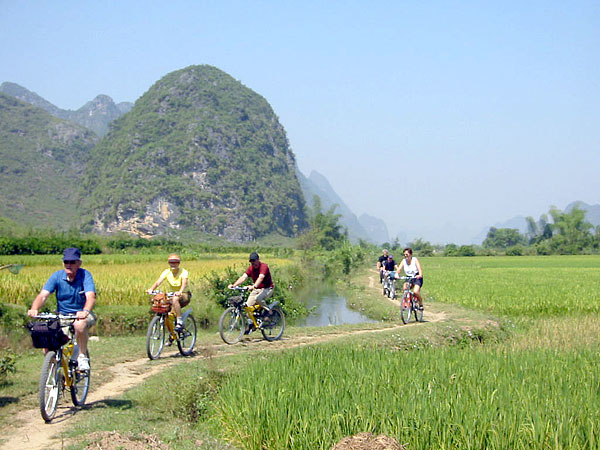 Biking along the rice fields in Yangshuo