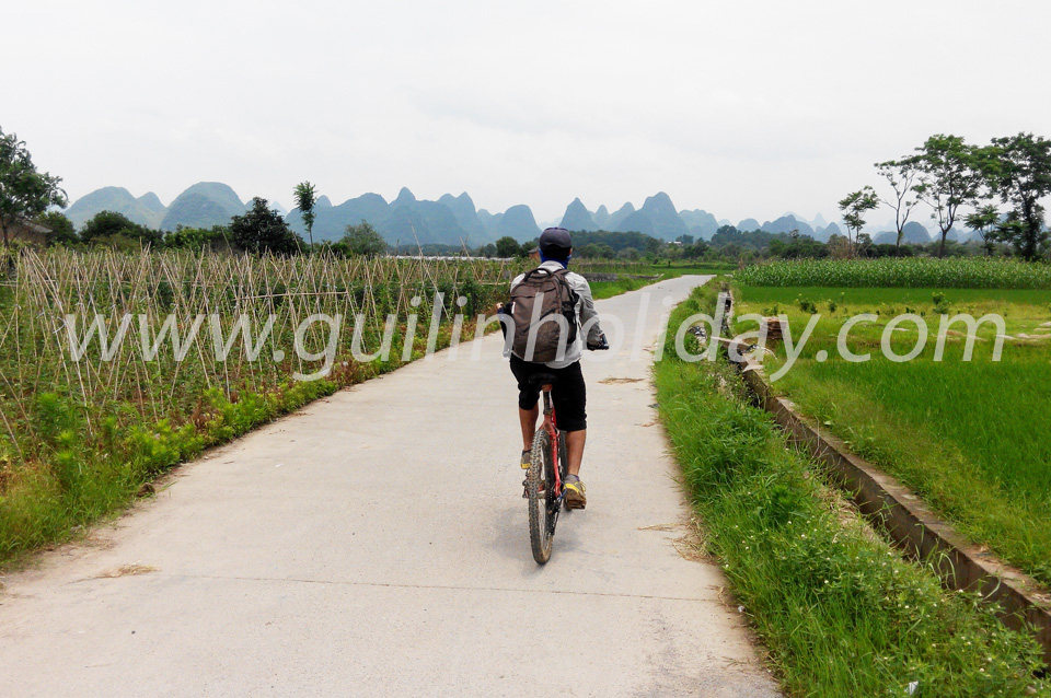 Real country road biking to Yangshuo