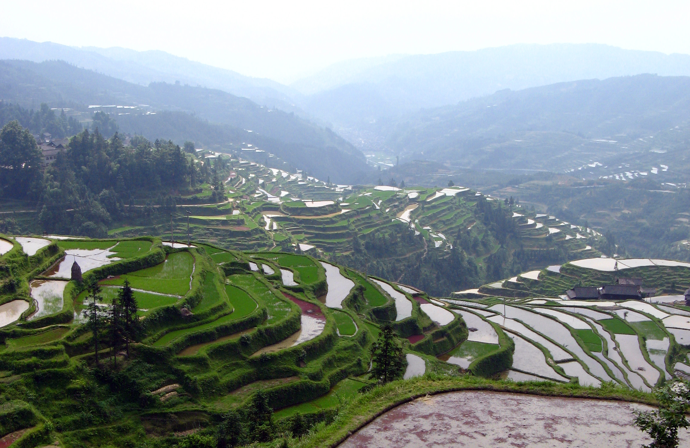 The rice terraces,Congjiang to Zhaoxing
