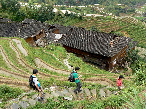 Longji hiking for the marvelous rice terraces