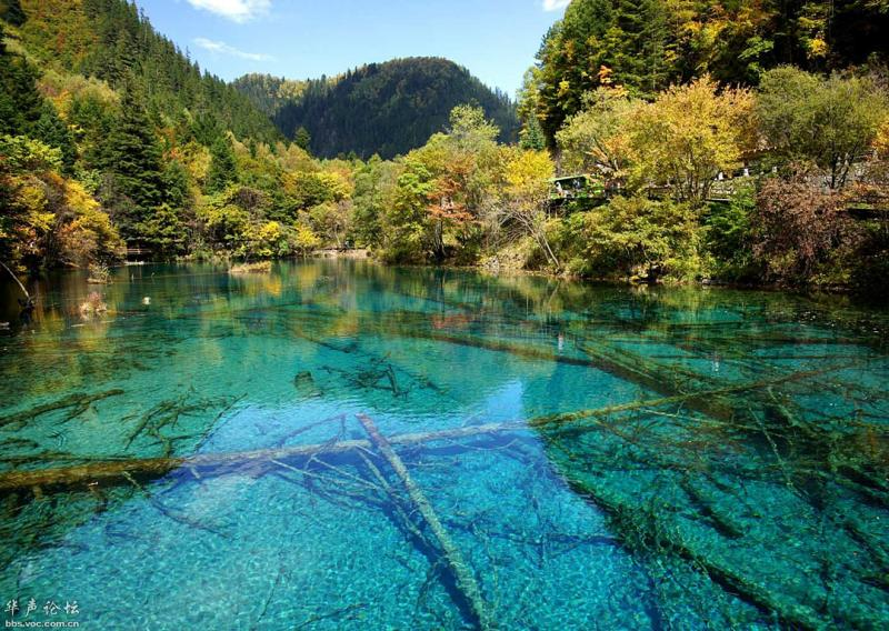 Five-flower Lake at Jiuzhaigou Valley,Sichuan China