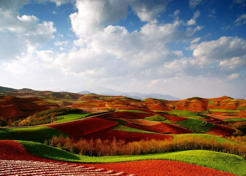 The laterite fields of Qicai Slope at Dongchuan,Yunnan