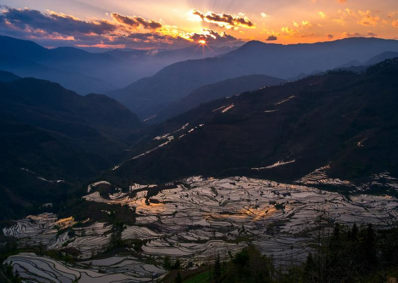 Duoyishu terraced fields of Yuanyang,Yunnan