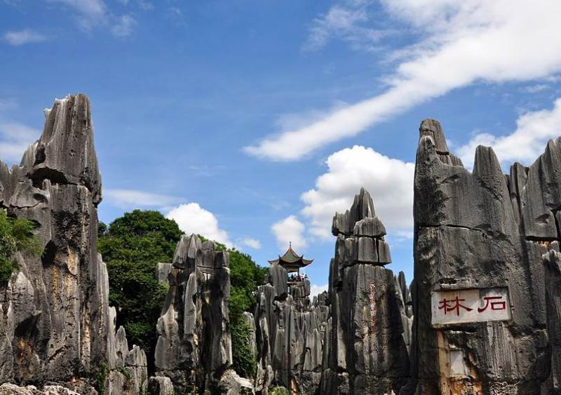 Kunming Stone Forest,Yunnan China
