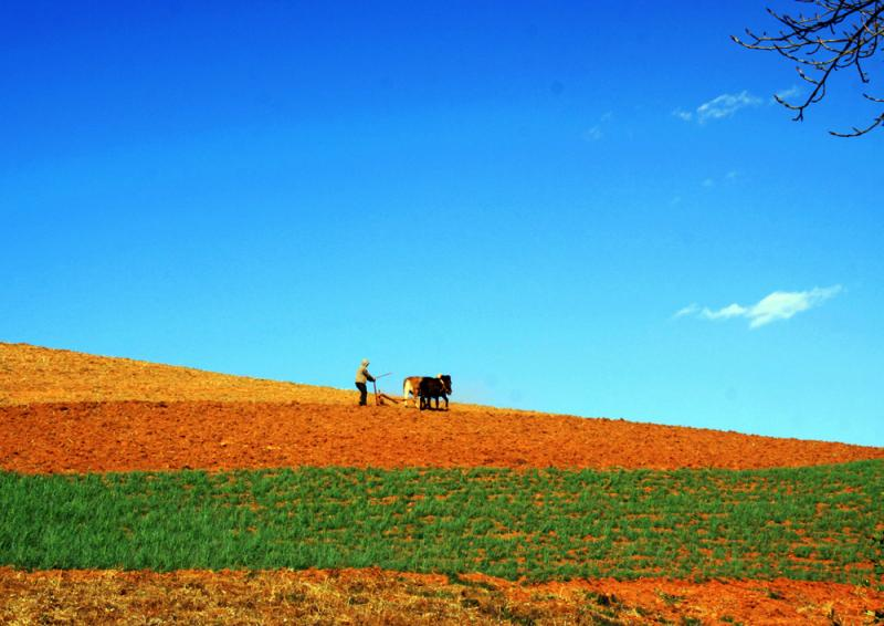 The laterite fields in Dongchuan,Yunnan China