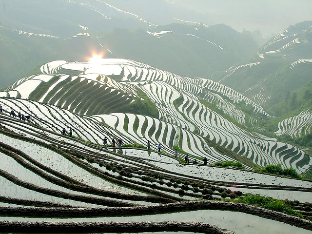The Longji terraced fields is one of the top scenic spots in Guilin