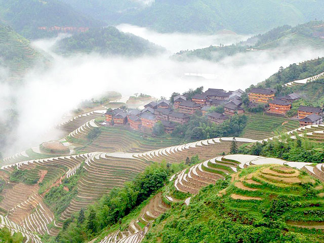 A bird's eye view of Longji rice terrace fields and houses of Zhuang people