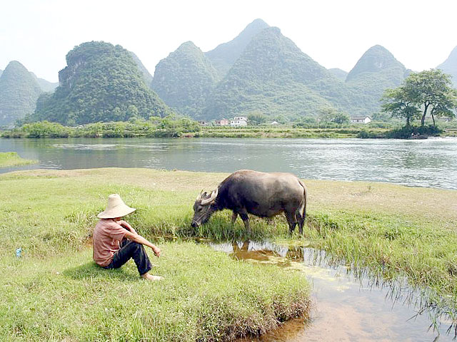 idyllic rural scenery of Yulong River in Yangshuo